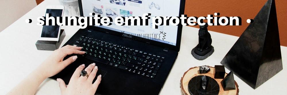 Protección de la Radiación EMF